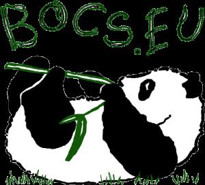 Adó 1% - Támogatás - BOCS Alapítvány